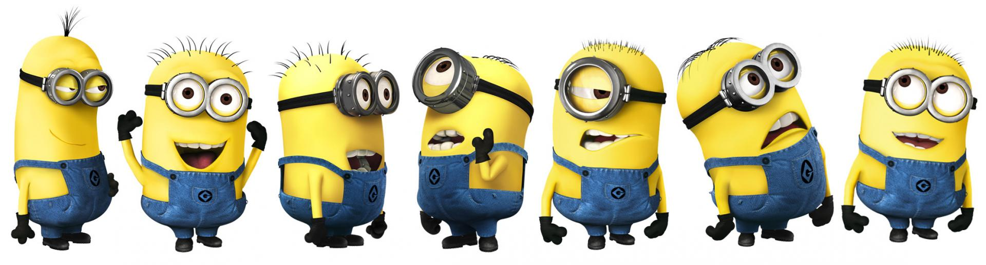 Minions 2015  Financial Information
