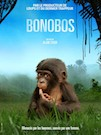Bonobos poster