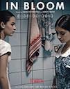 Grzeli nateli dgeebi poster