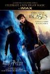 The Harry Potter IMAX Marathon