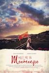 Meet Me in Montenegro poster