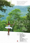Never Stand Still poster
