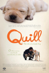 Quill: The Life of a Guide Dog poster