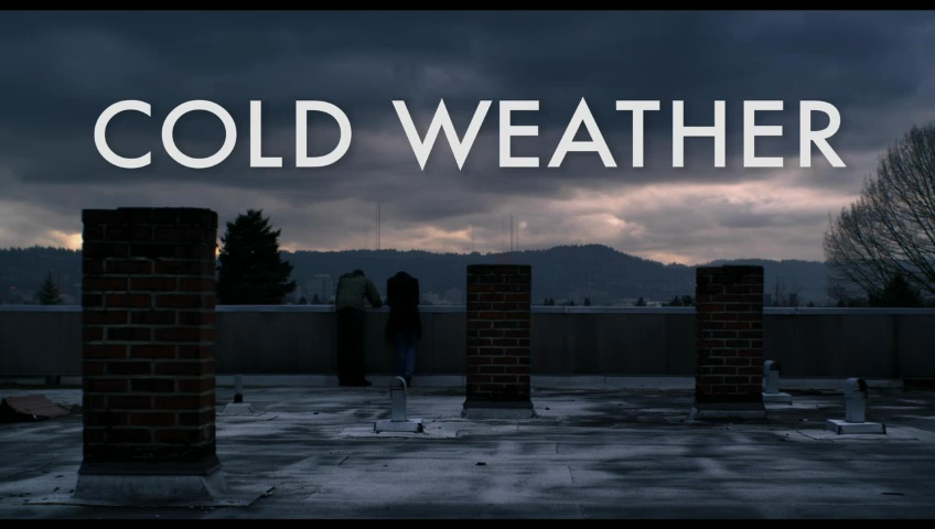 http://www.the-numbers.com/video/Cold-Weather/Cold-Weather-poster.jpg