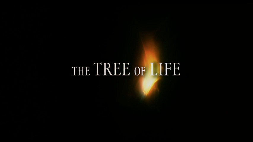 The Tree of Life HD Trailer